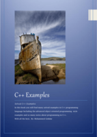 C++ Examples صورة كتاب