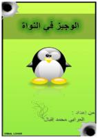 الوجيز في النواة Linux Kernel صورة كتاب