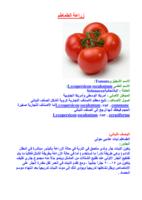 زراعة الطماطم صورة كتاب