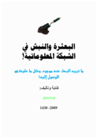 البعثرة والنبش في الشبكة المعلوماتية صورة كتاب